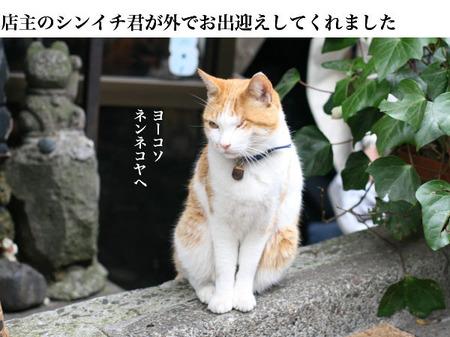 003_15