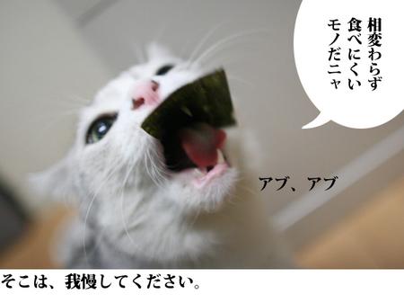 004_11