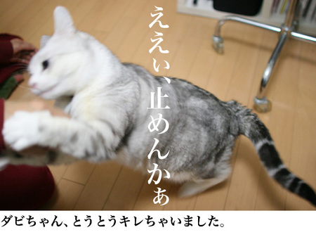 004_16