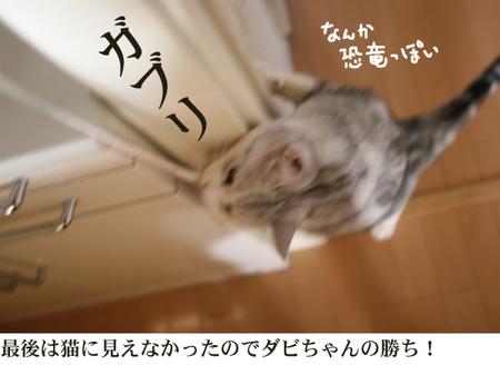 Maki6